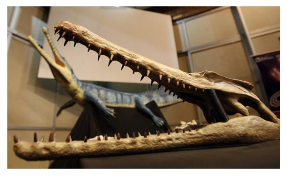 dientes de cocodrilo